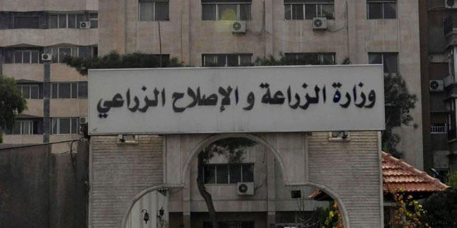 وزارة الزراعة تعيّن 164 طبيباً بيطرياً من الناجحين في مسابقتها