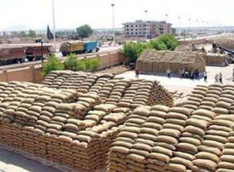 49 مركزاً جاهزاً لاستلام محصول القمح في سورية.. قاسم: مناقصة لاستيراد 200 ألف طن من روسيا