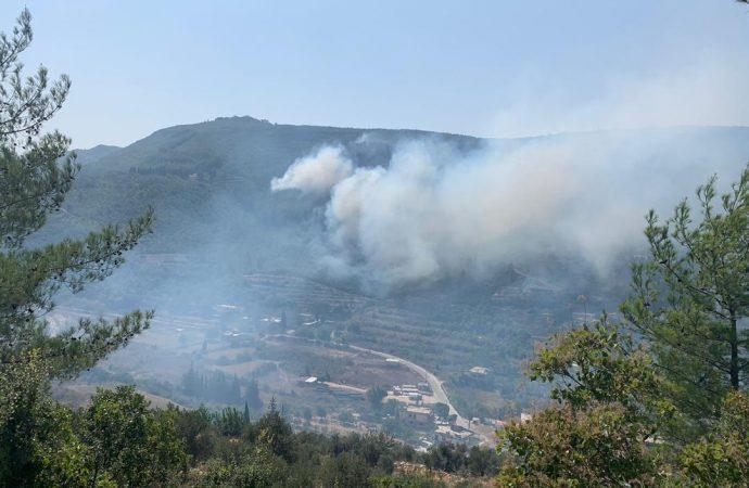 حريق في غابات الصنوبر في القرداحة باللاذقية .. مدير الزراعة: 12 إطفائية متواجدة في الموقع والأمور جيدة
