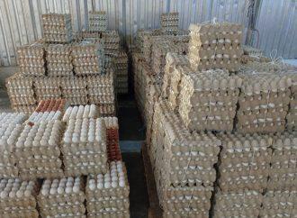 14 مليون بيضة مائدة إنتاج منشأة دواجن صيدنايا في النصف الأول من هذا العام